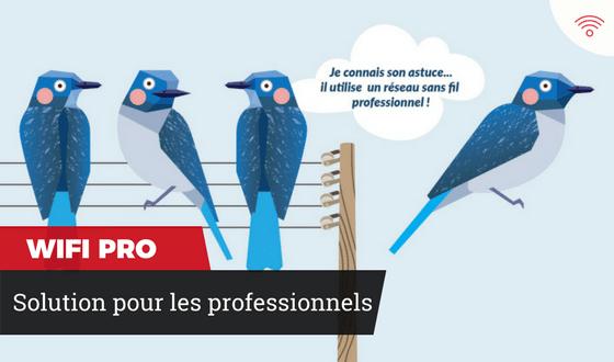 WIFI PRO - solutions pour les professionnels
